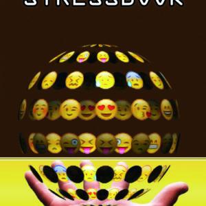 copertina stressbook